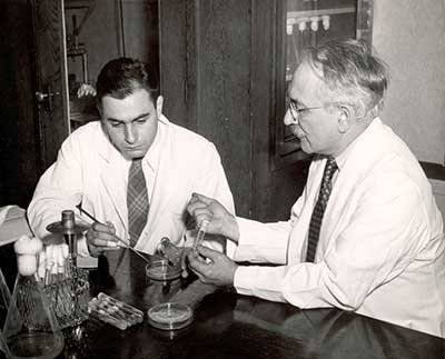 Albert Schatz and Selman Waksman